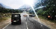 Caucasus. Kabardino-Balkaria. Elbrus. Baksan Gorge. August.