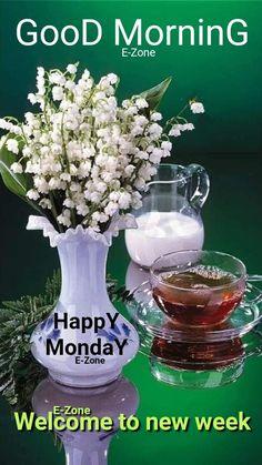 Happy Monday Quotes, Monday Blessings, New Week, Good Morning, Bom Dia, Buen Dia, Bonjour, Buongiorno