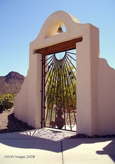 Courtyard Gate    A Paloverde tree in bloom behind this courtyard gate