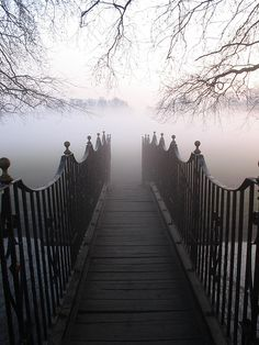 into the fog...