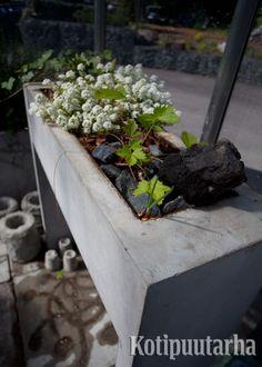 Betoni on suosittu materiaali, joka taipuu moneen! www.kotipuutarha.fi