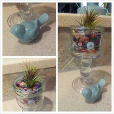 Air plant, mason jar, buttons, ceramic bird.