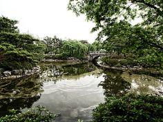 Bundang Central Park Pond