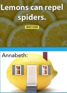 where was this fact when i got bit by a brown recluse?