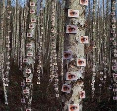 """Storm Thorgerson """"Eyes on Trees"""" from the album """"Wishville"""" by The Catherine Wheel - Beautiful Photos Storm Thorgerson, Dark Fantasy, Imagenes Dark, Arte Obscura, Night Vale, Cthulhu, Art Inspo, Cover Art, Techno"""