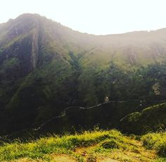Amazing view over Sri Lanka  What's your next trip? . #nature #safari #beach #reise #travel #traveling #reiseblog
