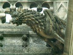 Les gargouilles de la cathédrale  de Tours