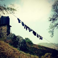 Laundry Lines #thelivinghome #waldorfish