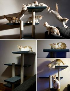 DIY: cat tower. When we move into our next house, I gotta do something similar, the old scratching carpet starts boring them!