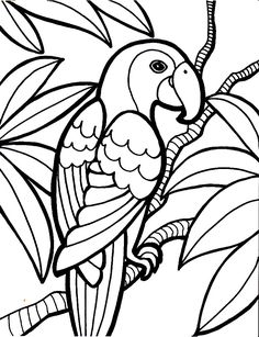 Trends For Realistic Parrot Coloring Page