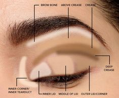 Makeup Tips for Beginners: Eyeshadow Placement & Eye Makeup Diagram Parts of the Eye for Applying Makeup Lid, crease, transition, outer v,… – Make Up for Beginners & Make Up Tutorial Makeup Guide, Eye Makeup Tips, Smokey Eye Makeup, Eyeshadow Makeup, Makeup Ideas, Makeup Tutorials, Makeup Products, Makeup Brushes, Makeup Designs
