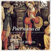 Puer Natus Est - Tudor Music for Advent and Christmas (Stile Antico)