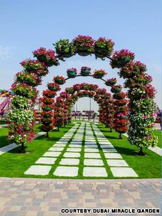 11 nova top atrakcija vo dubai ogromna cvetna gradina koja go odzema zdivot www.mk New attraction in Dubai The worlds biggest Flower Garden 32 PHOTOS Most Beautiful Gardens, Beautiful Flowers Garden, Love Garden, Big Flowers, Beautiful Roses, Amazing Gardens, Garden Art, Garden Design, Amazing Flowers