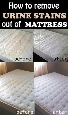 How to remove urine stains out of mattress - 101CleaningTips.net