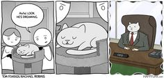 adventures of business cat - Google Search
