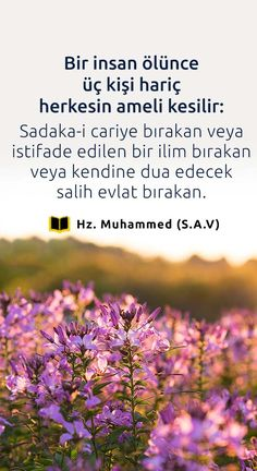 Muhammed Sav, Allah, Psychology, Quotes, Islamic, Psicologia, Quotations, God, Qoutes