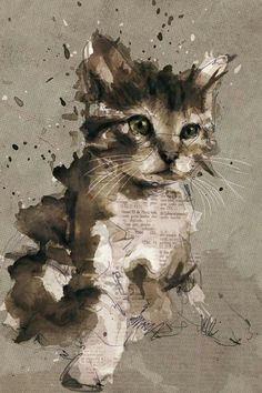 Cat - watercolor