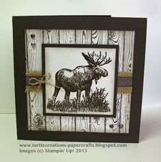 Turtle Creations: Hardwood - Walk in the Wild - Stampin' Up!