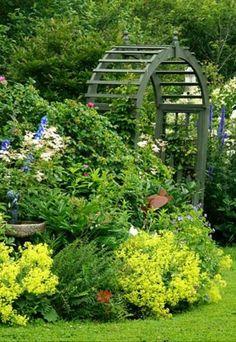 Backyard lush