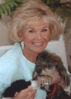 Doris Day, great animal rights activist. I wonder if she knew Rock Hudson was gay Hollywood Stars, Classic Hollywood, Old Hollywood, Doris Day Movies, Beach Boy, Rock Hudson, The Jacksons, She Movie, Girl Next Door