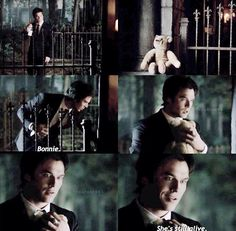 TVD 6x07|| Remember that moments before he saw the bear he was so upset, but the then he sees Miss Cuddles and Damon basically forgets that he was upset. Clearly its easier to get over Elena than he thought.