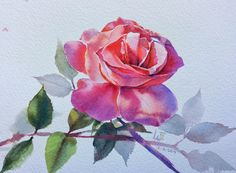 Розовые Розы. Воздушная магия La Fe. Галерея. Обсуждение на LiveInternet - Российский Сервис Онлайн-Дневников
