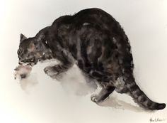 Etsy の Playing Tabby cat  original watercolor painting by bodorka