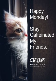 It's Monday! Stay caffeinated my friends! Dalai Lama, Save Animals, Animals And Pets, Dont Forget To Smile, Don't Forget, Cross Shirts, Christian Shirts, Happy Monday, It's Monday