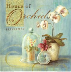 House of Orchids Poster van Angela Staehling - bij AllPosters.be