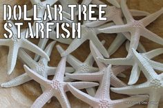 Spray Painting Starfish from the Dollar Tree