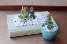 Show off your favorite plants with this darling DIY Book Planter tutorial. Linda Plant, Rustic Books, Homemade Books, Book Lamp, Book Page Crafts, Rock Decor, Succulents Diy, Succulent Ideas, Colorful Succulents