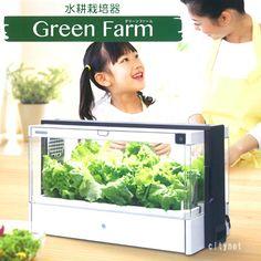 水耕栽培 グリーンファーム 家庭菜園セット ユーイング 水耕栽培器Green Farm  UH-A01E