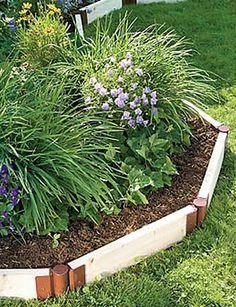Drought Tolerant Slope Garden Plan Gardens New zealand and