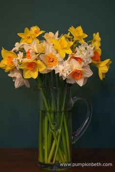 Beautiful, British Grown Flowers for Valentine's Day and Mother's Day 2017 - Pumpkin Beth Daffodil Flowers, Cut Flowers, Daffodils, Flowers For Valentines Day, Mothers Day Flowers, Stuff To Do, Things To Do, Still Life Photos, Spring Time