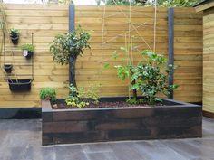 Op zoek naar de perfecte basis voor een strak muurtje of border? je zit helemaal goed met de Tuinvisie Wallblock New Brons 12x12x60 cm. Ideaal om verhogingen zoals een border of verhoogd terras mee te maken. Deze stapelblokken van beton zijn zo veelzijdig dat u er eindeloos mee kunt variëren in uw tuin. De Wallblock New 12x12x60 cm serie is niet voor niets ontzettend populair. Start nu met de aanleg van je tuin met de scherp geprijsde stapelblokken van Tuinvisie. #klantfoto