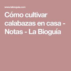 Cómo cultivar calabazas en casa - Notas - La Bioguía Blog, Home, Pumpkin Growing, Harvest, Vegetable Gardening, Report Cards, Gardens, Blogging
