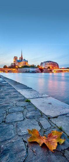 ✿ ❤ Notre Dame, Paris, France