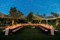 This wedding had us at twinkle lights. And I guess Cabo San Lucas! These cuties embraced their destination wedding with papel picado invites, furry pre-ceremony friends (*cough cough* PUPPIES) and an al fresco feast amidst sunflowers and stars. So glow up Wedding Themes, Wedding Venues, Wedding Photos, Wedding Decorations, Wedding Ceremony, Aisle Decorations, Tent Wedding, Wedding Coordinator, Farm Wedding