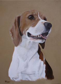 """'Alfie'. Beagle by Tania Robinson. Private commission 2012. Acrylic on canvas 9""""x12"""""""