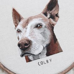 Majestic Colby ☺️ If you were looking to get your own pet portrait please sign up to my mailing list :D you can subscribe via my website or on my Facebook page! I'll be sending out a newsletter very soon with the next release date :) #embroidery #hoopart #handembroidery