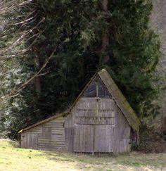 A barn I saw in Quilcene, WA. Don't know if it is still there or not. Cannot remember where it was to go check.