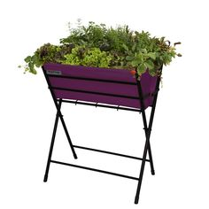 This foldable VegTrug™ Poppy is ideal for keen gardeners who have small gardens, patios and balconies with restricted space. The colourful, modern design makes this VegTrug a more appealing option for younger keen gardeners. Raised Garden Planters, Raised Vegetable Gardens, Outdoor Planters, Raised Garden Beds, Vegetable Planters, Seed Planter, Planter Pots, Lawn And Garden, Garden Tools