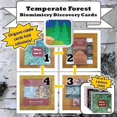 Temperate Forest Biomimicry Discovery Cards Kit (Set of 6 plus Bonus Material) from STEM Roots from STEM Roots on TeachersNotebook.com (18 pages)  - This Biomimicry Discovery Card kit includes the six Biomimicry Discovery Cards featured in my Trait Mountain STEM Lesson Plans plus two additional computer interactives.