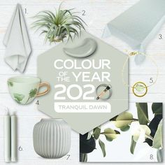 Tranquil Dawn Flexa kleur van het jaar 2020 trendkleur shopping inspiratie - Lilly is Love Room Colors, House Colors, Paint Colors, Fundraiser Party, New Years Decorations, Color Of The Year, House Painting, Color Trends, Color Inspiration
