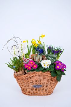 Bike basket and flower basket, two in one. This is what we call a Fabulous Baskets gift idea. Info & Orders: contact@fabulousbaskets.ro http://fabulousbaskets.ro/cosuri-bicicleta/cos-natur-cu-maner-si-aranjament-floral