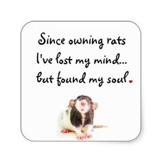 Since owning rats, I've lost my mind.... but found my soul.