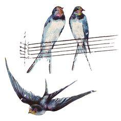 Vintage Swallow Drawings $.99
