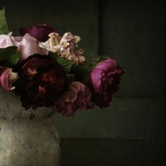 .. Oh my ...What a surprise i love dark flowers ...They are my favorites...
