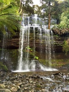 Russell Falls, just a fairly short drive from Hobart, Tasmania.