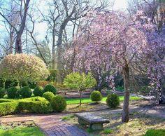 Ashland Estate garden..The home ,of Henry Clay.